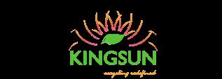 Kingsun Enviro Private Limited