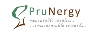 Prunergy Systems